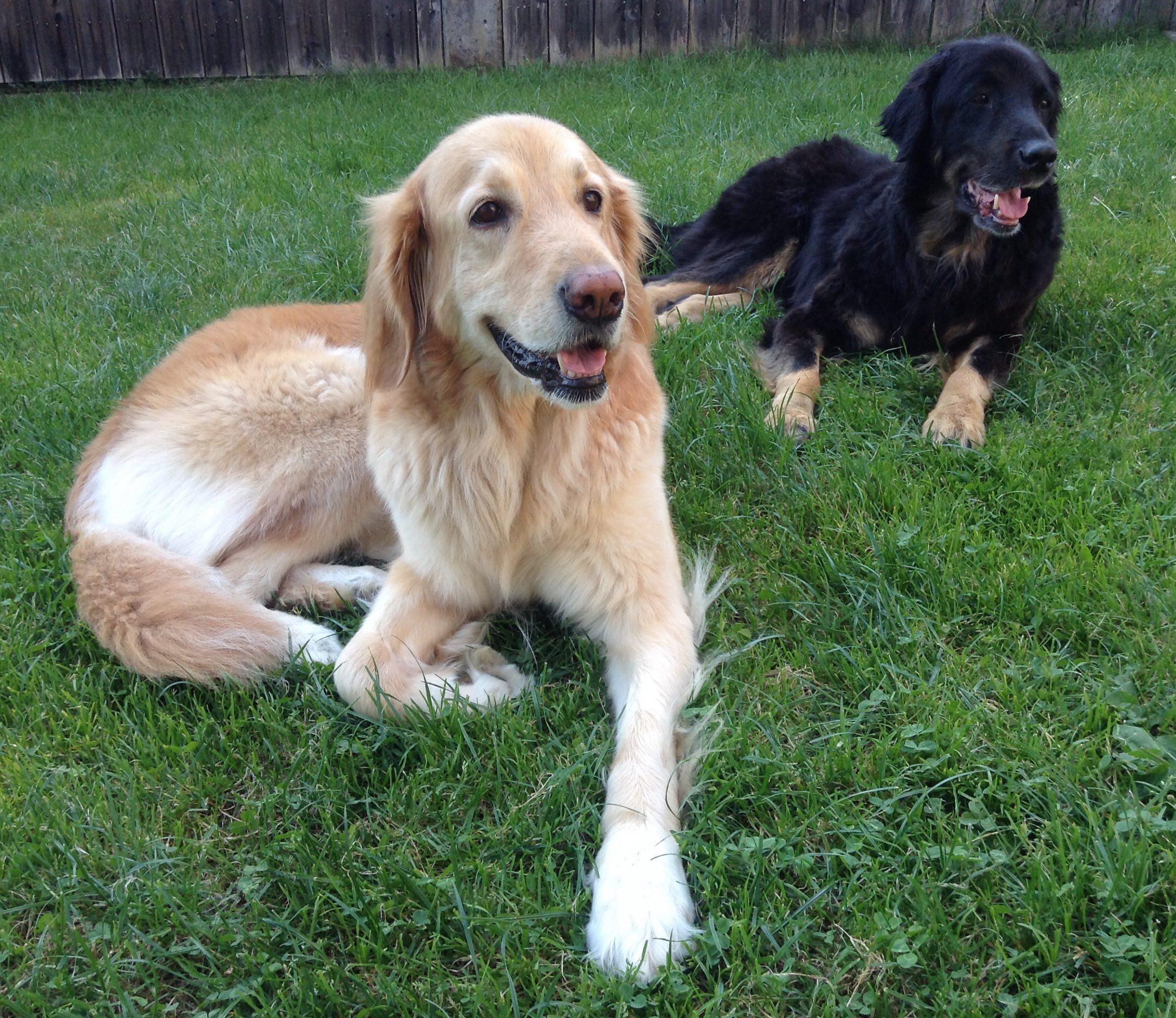 Ich gemeinsam mit meiner besten Freundin, im Garten